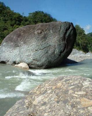 le plus grand poisson au monde skyblog par amine