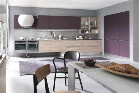 cuisine grise et aubergine couleur pour cuisine 105 idées de peinture murale et façade