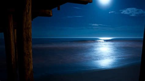 beethoven moonlight sonata  relaxing nature sounds