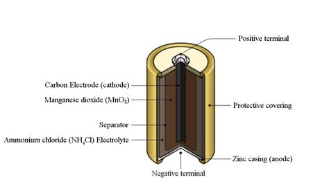 Battery Cell Diagram by Understanding The Working Principle And Uses Of A Cell