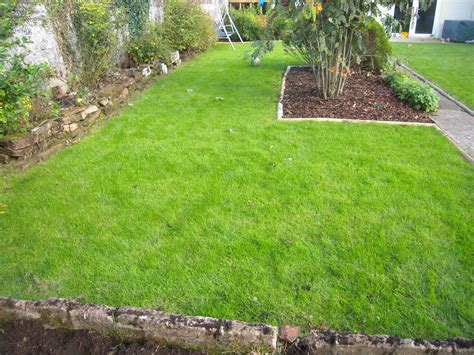 how to put in a new lawn to turf or seed your new lawn a quick guide lawns for you