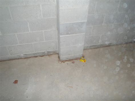 Dryzone Llc Basement Waterproofing Photo Album Felton