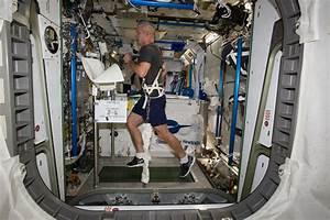 Steve Swanson Exercises on the COLBERT   NASA