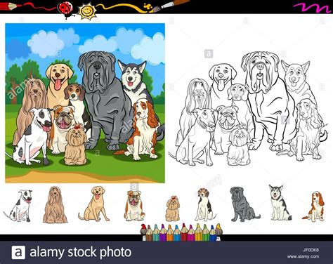 Children Playing Husky Dog Stock Photos & Children Playing