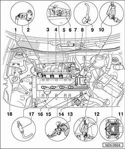Volkswagen Workshop Manuals  U0026gt  Polo Mk3  U0026gt  Power Unit  U0026gt  4cv