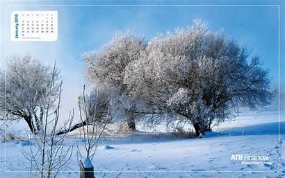 January Desktop Wallpapers Background Calendar Wallpapersafari