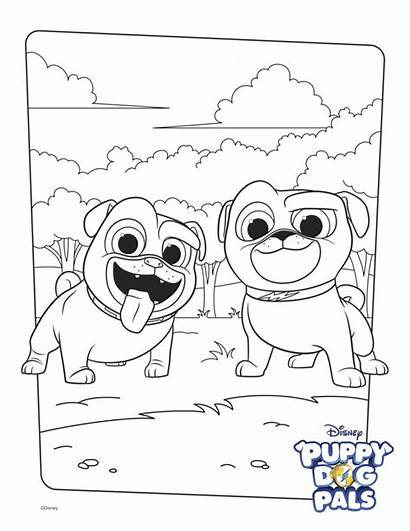 Coloring Puppy Pals Bingo Dog Pages Printable