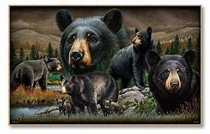 American Expedition Black Bear Collage Graphic Art eBay