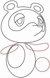 Nook Tom Crossing Animal Drawing Step Easy Draw Tutorial Circle sketch template