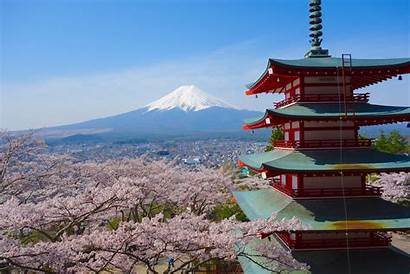 Japanese Pagoda Background Sakura Mountain Fujisan Chureito