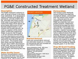 New Ccwg Online Library  U2013 Central Coast Wetlands Group