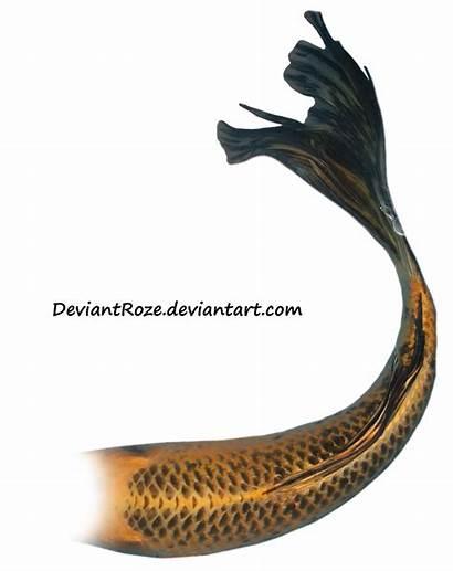 Mermaid Tail Koi Tails Orange Deviantart Jinxmim