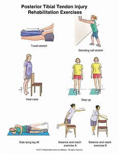 Exercises To Rehabilitate And Strengthen The Posterior