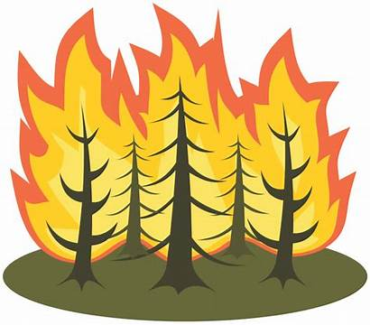 Fire Forest Clipart Burning Drawing Tree Clip
