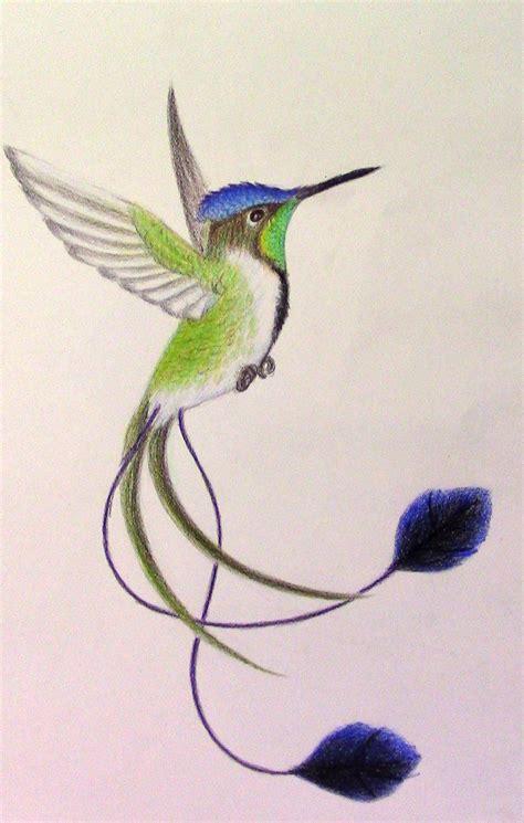 marvellous spatuletail hummingbird  mysteriouswhitewolf