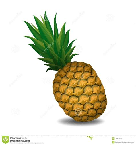 pineapple pineapple  white background royalty  stock