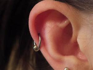 Gallery For > Helix Ear Piercing