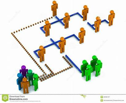 Structure Organizational Staff Clipart Line Hierarchy 3d