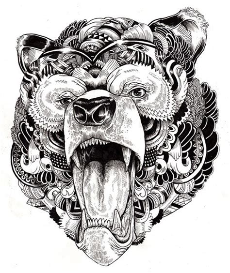 incredibly detailed animal illustrations  modern met
