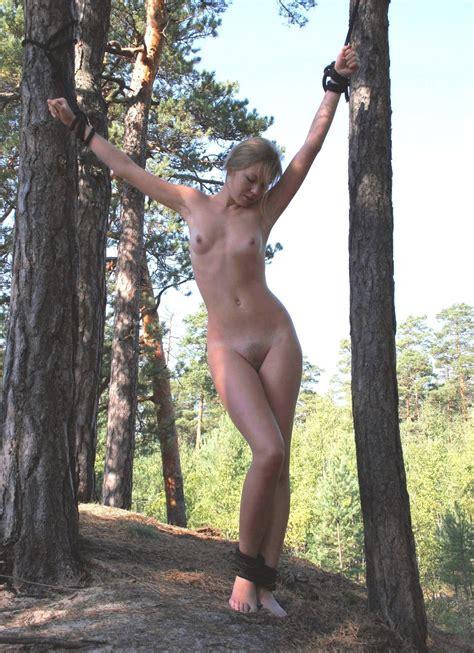 Outdoor bondage tied to trees Milf porn.