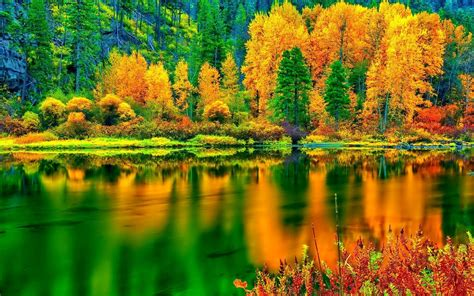 Colourful Autumn Background by Hd Breathtaking Autumn Colors Wallpaper Free