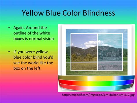 blue yellow color blind by kearney and juliet ruhe ppt