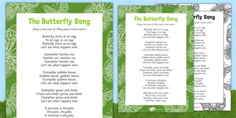 Song Butterfly The Butterfly Song Eyfs Butterfly Egg Life Cycle Cocoon