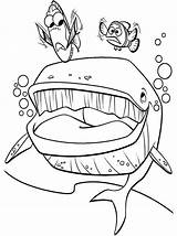Nemo Finding Coloring Pages Marlin Whale Dory Bruce Crush Mouth Kolorowanki Speaking Clipart Clip Printable Getcolorings Meet Library Gdzie Jest sketch template