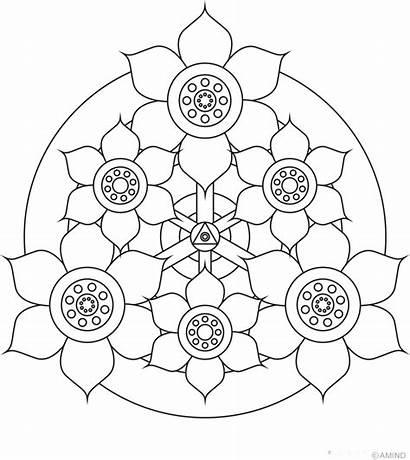 Mandalas Colorear Imprimir Pintar Flores Dibujos Eligiendo
