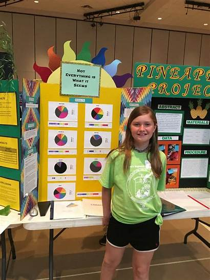 Science Fair Elementary Students Tate Mathematics Excel