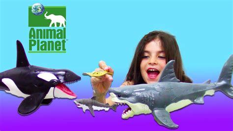 bath sharks  kids toy unboxing animal planet mega