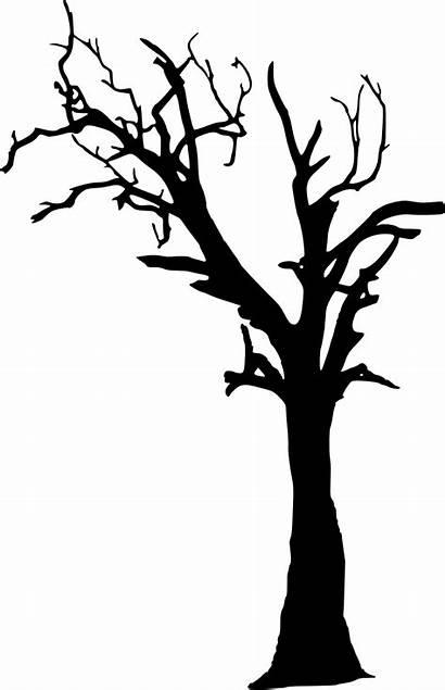 Silhouette Tree Creepy Library