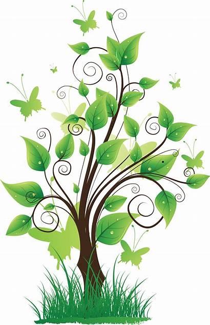 Nature Tree Transparent Clipart Pretty Clip Icon