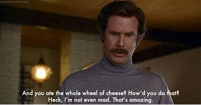 Cheese Whole Wheel Ate Cheddar Even Grilled