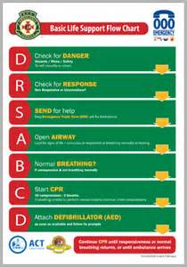 Basic Life Support Flow Chart
