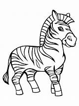 Zebra Coloring Pages Printable Animals Smiling Print sketch template