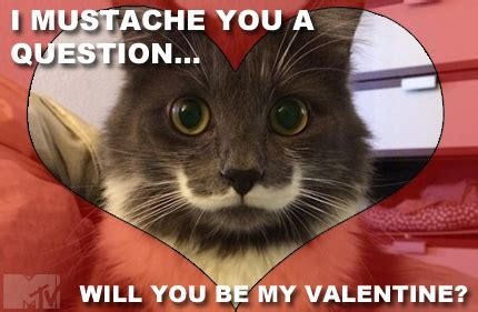 Cute Valentine Meme - 20 cute and funny valentine s day memes sayingimages com