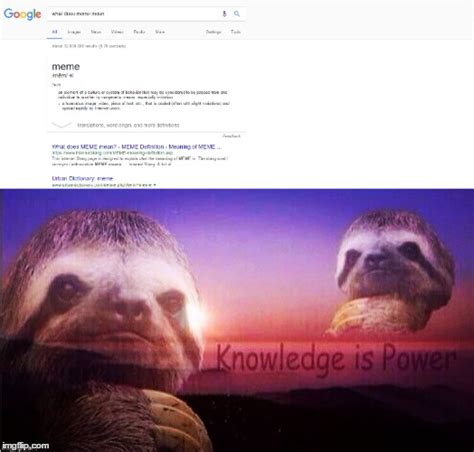 Knowledge Meme - no text needed greatest knowledge man kind has ever discovered imgflip