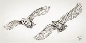 Owl Flying Drawing | www.imgkid.com - The Image Kid Has It!