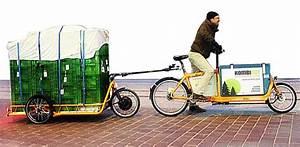 E Bike Für Fahrradanhänger : carla cargo fahrradanh nger mit elektromotor ~ Jslefanu.com Haus und Dekorationen