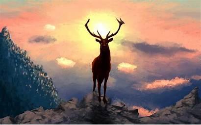 Deer 4k Artwork Wallpapers Resolution Animals Artist