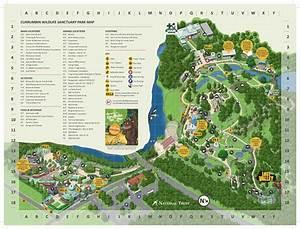Park Map    Currumbin Wildlife Sanctuary
