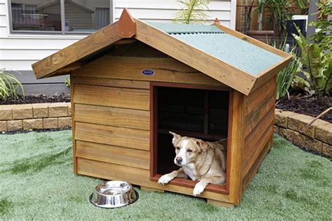 diy wooden dog kennel plans wooden  woodworking plans  toy box ossifiedquj