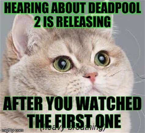 Heavy Breathing Meme - image gallery heavy breathing cat meme