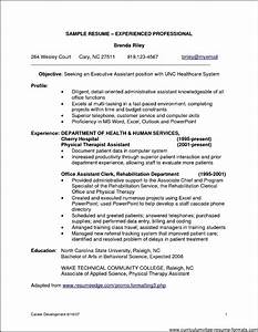 Professional resume samples for it experienced free for Free professional resume format