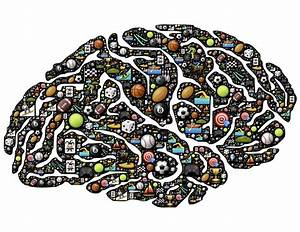 The Athletic Brain How Neuronal Signals Influence Sports
