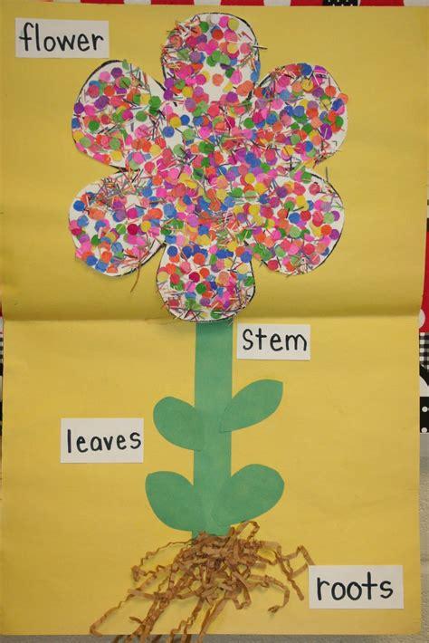 mrs s kindergarten plants where i spend my time 777 | 6df01518e0e42635b233b67486cce27e