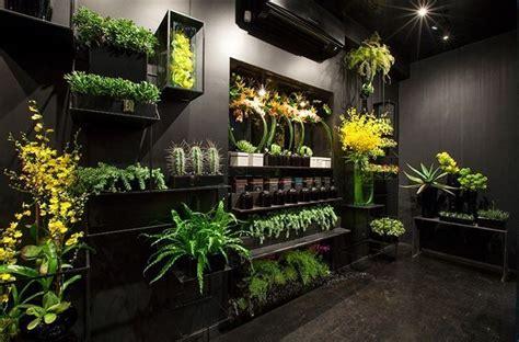 shop new ovando 10644929 844073992289593