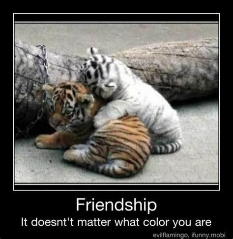 Friendship Meme - friendship meme smilegag