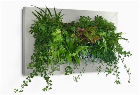 Frische Wanddekoration Mit Pflanzenwandregal Fuer Blumen by Wanddeko Mit Pflanzen Livepicture Erfrischt Das Ambiente